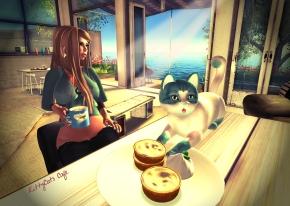 kittycatsCafe